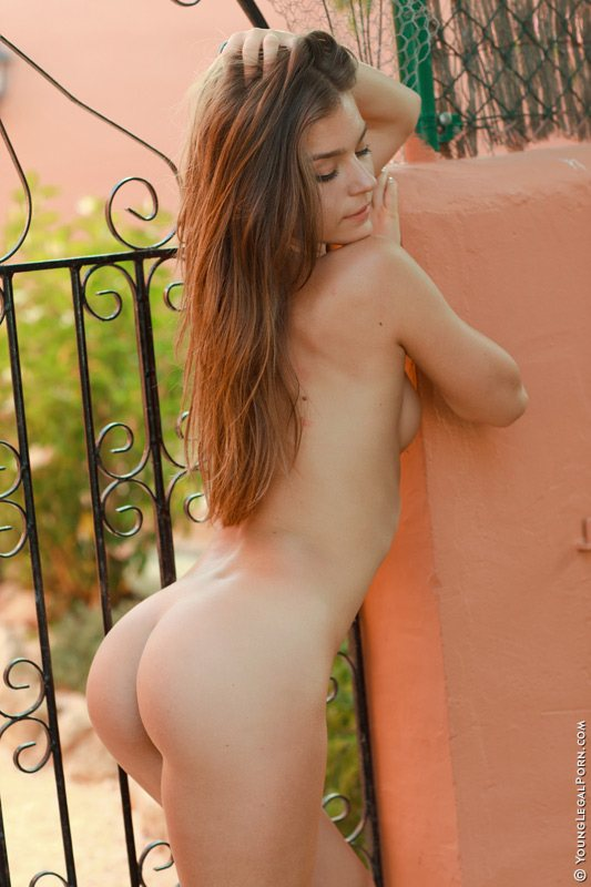 A young naked woman is leaning against a gate showing her butt.