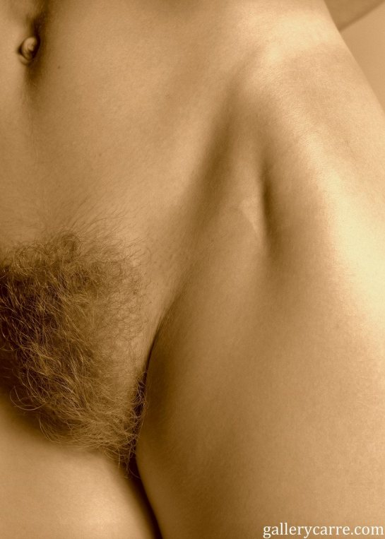 This is a close-up photo of Anita's pubic hair.