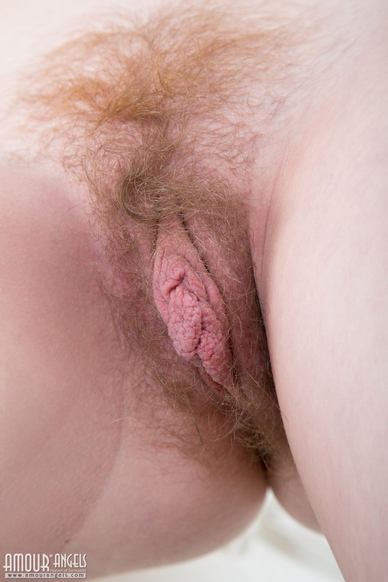 Closeup of light brown pubic hair around pink pussy.